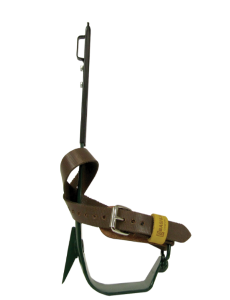 Picture of BD12L Series Narrow Stirrup Steel Non-Replaceable Gaff Climbers